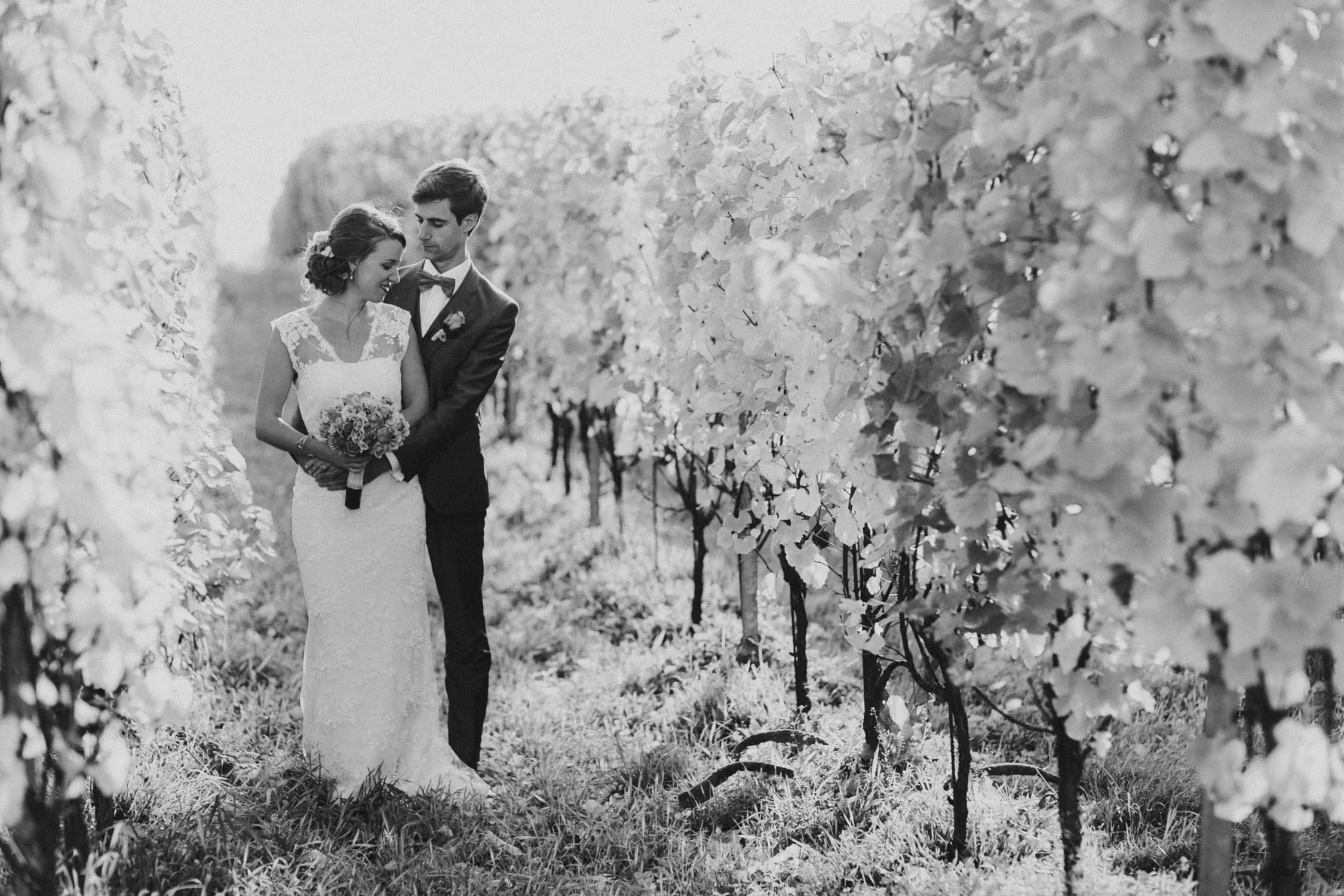 Huwelijksreportage wijngaard