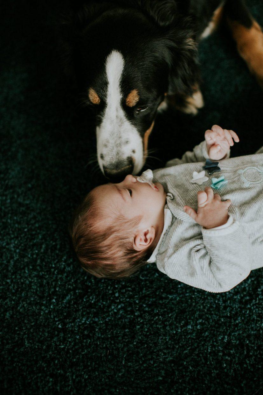 Newborn photography Brussels